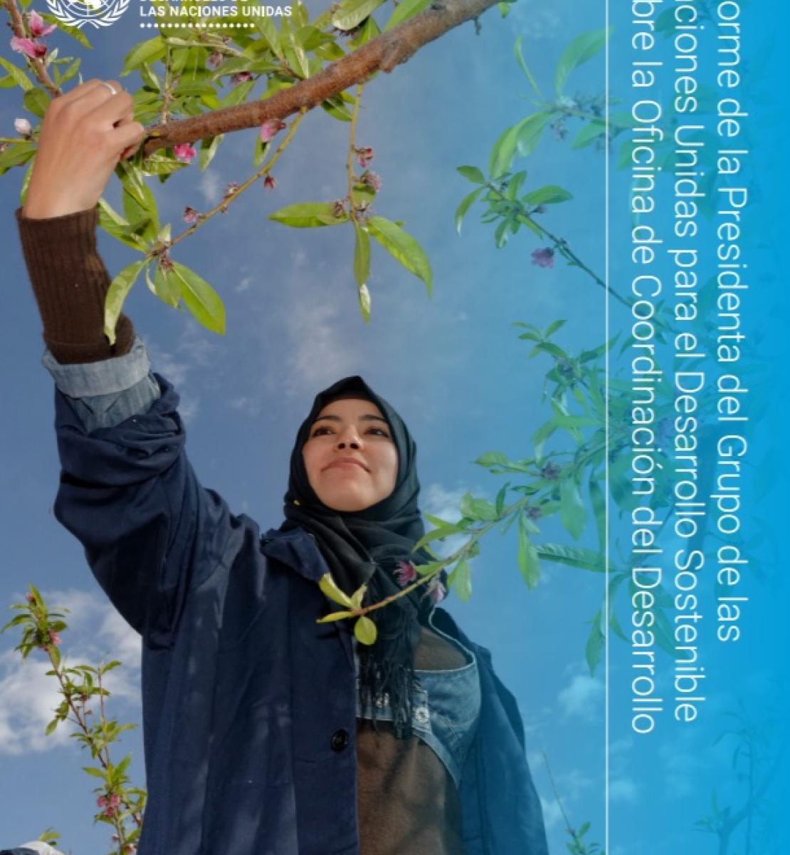 Portada del Informe 2021 de la Presidencia del Grupo de las Naciones Unidas para el Desarrollo Sostenible sobre la Oficina de Coordinación del Desarrollo. Se muestra un plano contrapicado de una mujer recolectando frutos en un árbol, con un cielo azul despejado en el fondo.