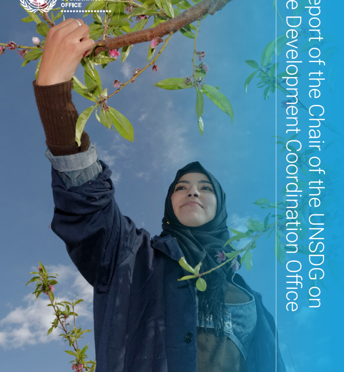 The cover shows an image of a young woman reaching for a tree branch with the UN emblem to the top left of the cover and title displayed vertically across the right edge of the cover.