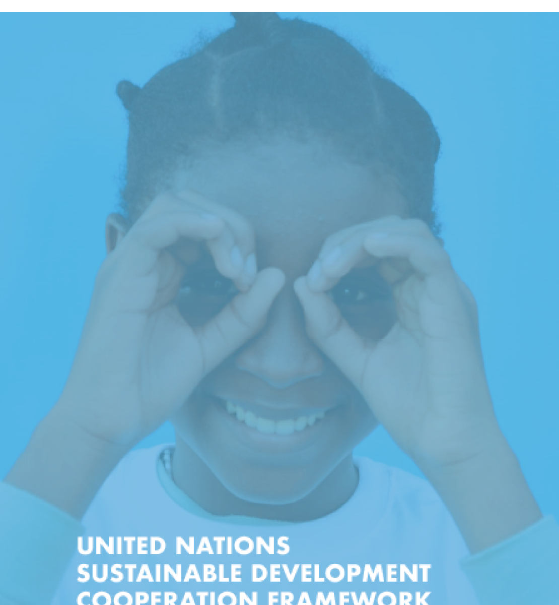This is a document with a blue background and white text.  The Government of Cameroon and UN logos appear at the top of the document.