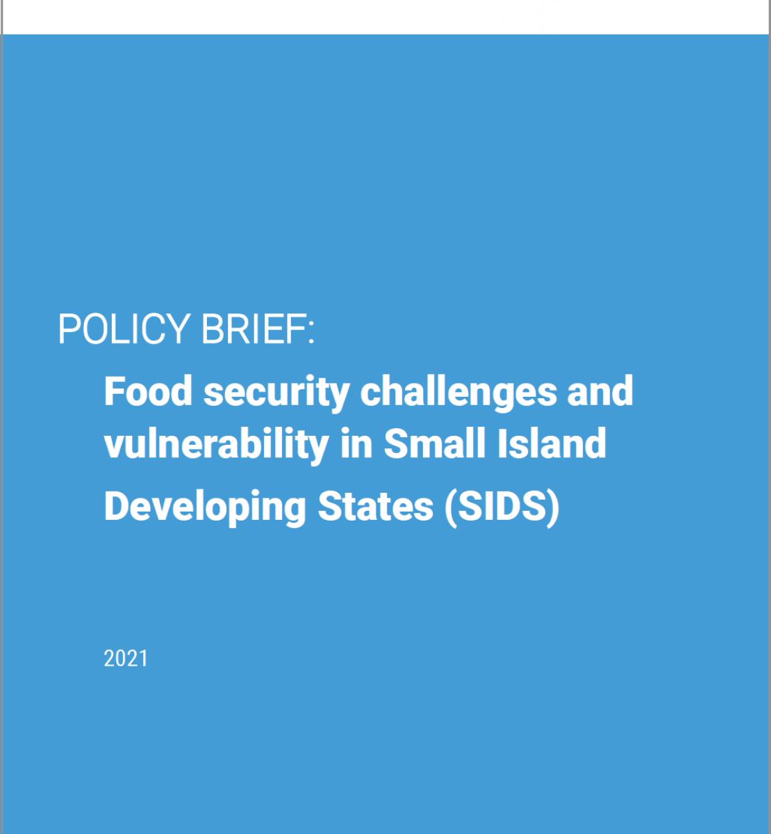العنوان باللون الأبيض على خلفية زرقاء مع شعار الأمم المتحدة وسجل المؤلف المشارك في الجزء العلوي فوق شريط أفقي أبيض.