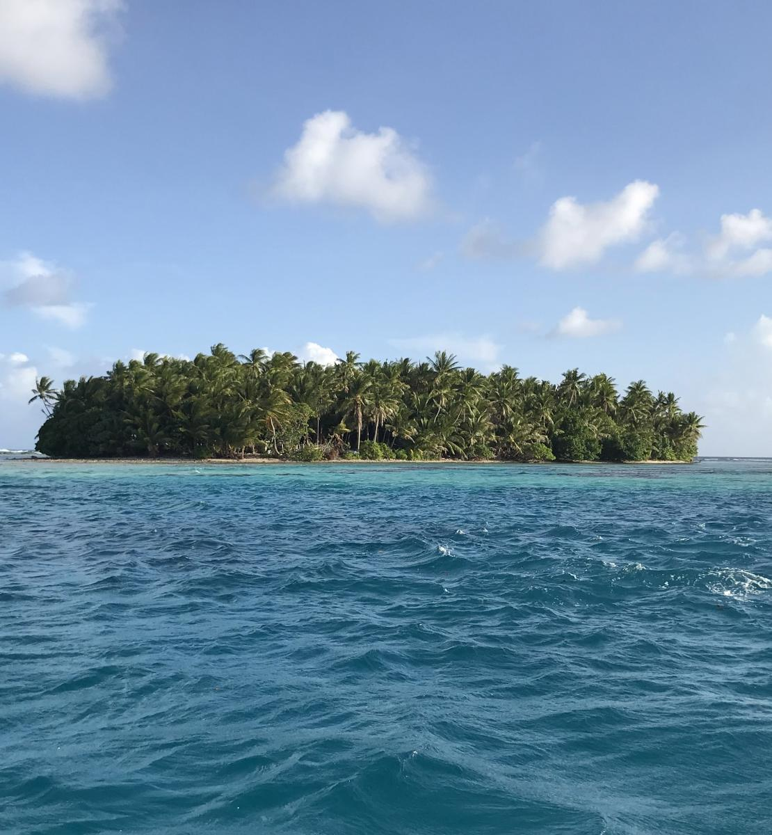 A landscape view of an island full of trees in the ocean on a beautiful day.