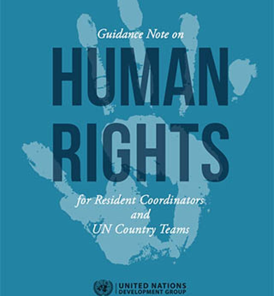 面向联合国可持续发展集团驻地协调员和联合国国家工作队的人权指导说明