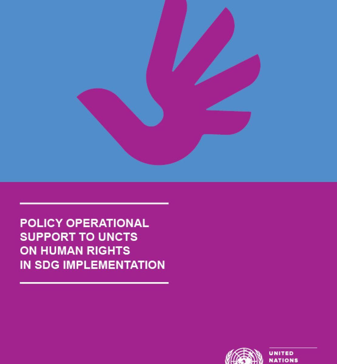 实施可持续发展目标过程中为联合国国家工作队提供的人权政策和活动支持